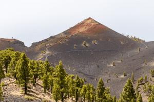 Tenerife La Palma La Gomera